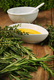 Assorted fresh herbs with olive oil Royalty Free Stock Images