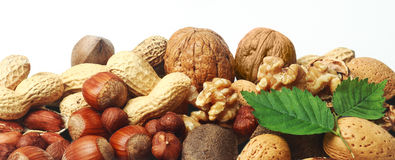 Assorted fresh nuts horizontal banner. With whole almonds, hazelnuts, brazil nuts, peanuts and walnuts in their shells and shelled on white with two green Royalty Free Stock Image