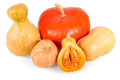 Assorted fresh pumpkins  different shapes isolated on white background. Stock Photography