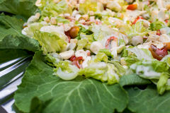 Assorted fresh salads displayed Royalty Free Stock Photography