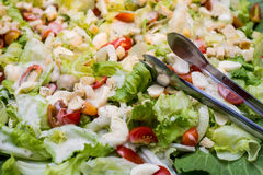 Assorted fresh salads displayed stock photo