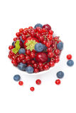 Assorted fresh seasonal berries in a bowl isolated on white Royalty Free Stock Photos