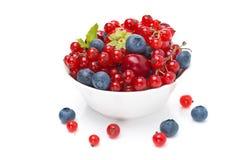 Assorted fresh seasonal berries  Stock Image