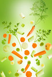 Assorted fresh vegetables falling. On light green background stock illustration