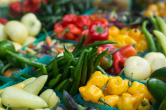 Assorted fresh vegetables at market Royalty Free Stock Photography