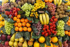 Assorted fruit of different colors displayed during a food and wine fair. Assorted fruit of different colors, bananas, oranges, grapes, exposed during a taste stock images