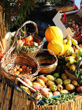 Assorted fruit stand at the market Royalty Free Stock Photos