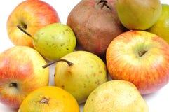 Assorted fruits stock photos