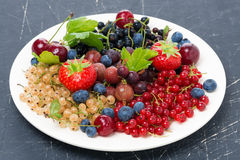 Assorted garden berries on a plate on dark background Royalty Free Stock Image