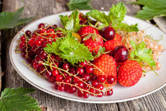 Assorted garden berries on a plate on a wooden background Stock Image
