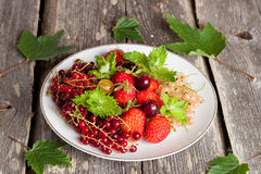 Assorted garden berries on a plate on wooden  background Royalty Free Stock Photos