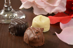 Assorted gourmet chocolates Royalty Free Stock Image