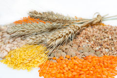 Assorted grains with wheat ears Royalty Free Stock Image