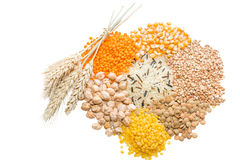 Assorted grains. Wild rice, lentils, buckwheat, chickpeas and corn  with wheat ears. Selective focus Royalty Free Stock Images