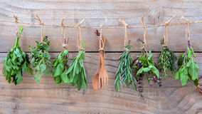 Assorted hanging herbs ,parsley ,oregano,mint,sage,rosemary,sweet basil,holy basil, and thyme for seasoning concept on rustic. Old wooden background stock images
