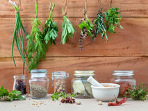 Assorted hanging herbs ,parsley ,oregano,sage,rosemary,sweet bas Stock Photo