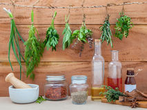 Assorted hanging herbs ,parsley ,oregano,sage,rosemary,sweet basil,dill,spring onion and set up with dry and fresh thyme. Olive oil ,sesame oil ,cinnamon and royalty free stock photography