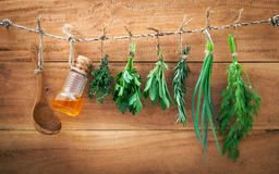 Assorted herb bundles hanging parsley ,sage,rosemary, dill,sprin Royalty Free Stock Image