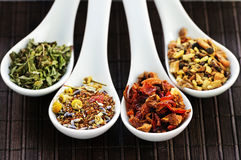 Assorted herbal wellness dry tea in spoons stock photos