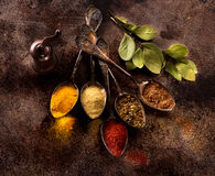 Assorted herbs, seasonings and spices. Top view Royalty Free Stock Image