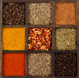 Assorted herbs and spices Royalty Free Stock Photography