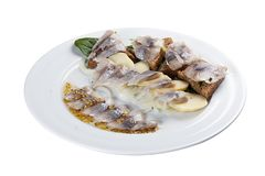 Assorted herring. A traditional Norwegian dish. On a white background stock image