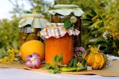 Assorted homemade preserves Stock Images