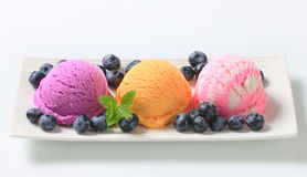 Assorted ice cream with fresh blueberries Royalty Free Stock Photo