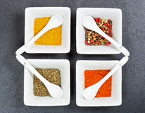 Assorted indian spices Stock Image
