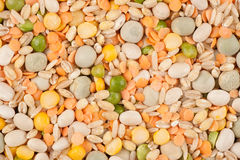 Assorted legumes Stock Photo