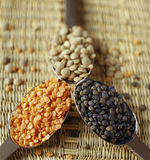 Assorted lentils. Food, gastronomy,culinary,cookery Stock Images