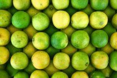 Assorted limes Stock Images