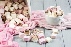 Assorted marshmallow on a gray table. In a cup, pink scarf Stock Images