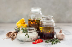 Assorted Meat Marinades Stock Images