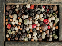 Assorted mezcló los granos de pimienta Foto de archivo libre de regalías