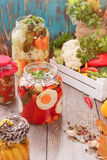 Assorted mezcló verduras en preservar los tarros Imagen de archivo