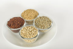 Assorted millets royalty free stock image