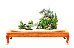 Miniature bonsai plants on wooden display table. Assorted miniature bonsai plants with taihu rock displayed on a unique long wooden table stock image