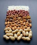 Assorted mischte Nüsse, Erdnüsse, Mandeln, Walnüsse und Samen des indischen Sesams Stockfotos