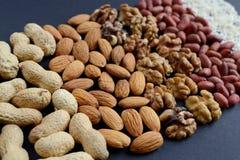Assorted mischte Nüsse, Erdnüsse, Mandeln, Walnüsse und Samen des indischen Sesams Lizenzfreies Stockbild