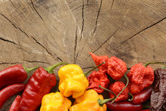 Assorted mix of hot peppers Stock Images