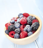 Assorted mixed berries Stock Image