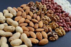Assorted mixed nuts, peanuts, almonds, walnuts and sesame seeds. Royalty Free Stock Image