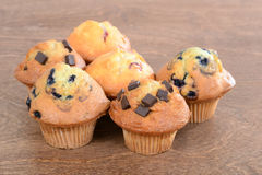 Assorted muffins Stock Photography