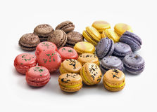 Assorted multi flavoured macaroons isolated Stock Images