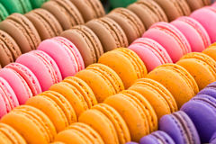 Assorted Multicolored Macaroon Cookies. Stock Photos