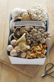 Assorted mushroom in basket on table elevated view Stock Photography