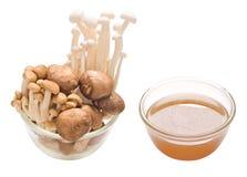 Assorted mushroom and stock isolated Stock Photo