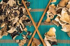 Assorted mushrooms Royalty Free Stock Image