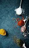 Assorted natural spices Royalty Free Stock Images